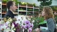 Gardenia największa w Europie